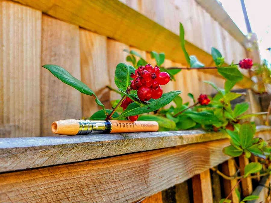 TREET disposable CBD Vape pen